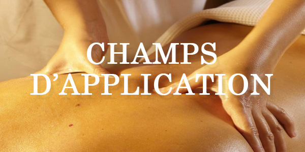 Champ application edonis viphilbienetre 1