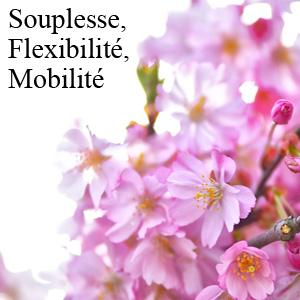 Complements alimentaires souplesse flexibilite mobilite px